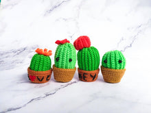 Load image into Gallery viewer, Cactus Baby