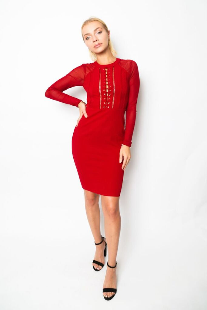 """Queen of Hearts"" Long-Sleeved Lace and Mesh Dress"