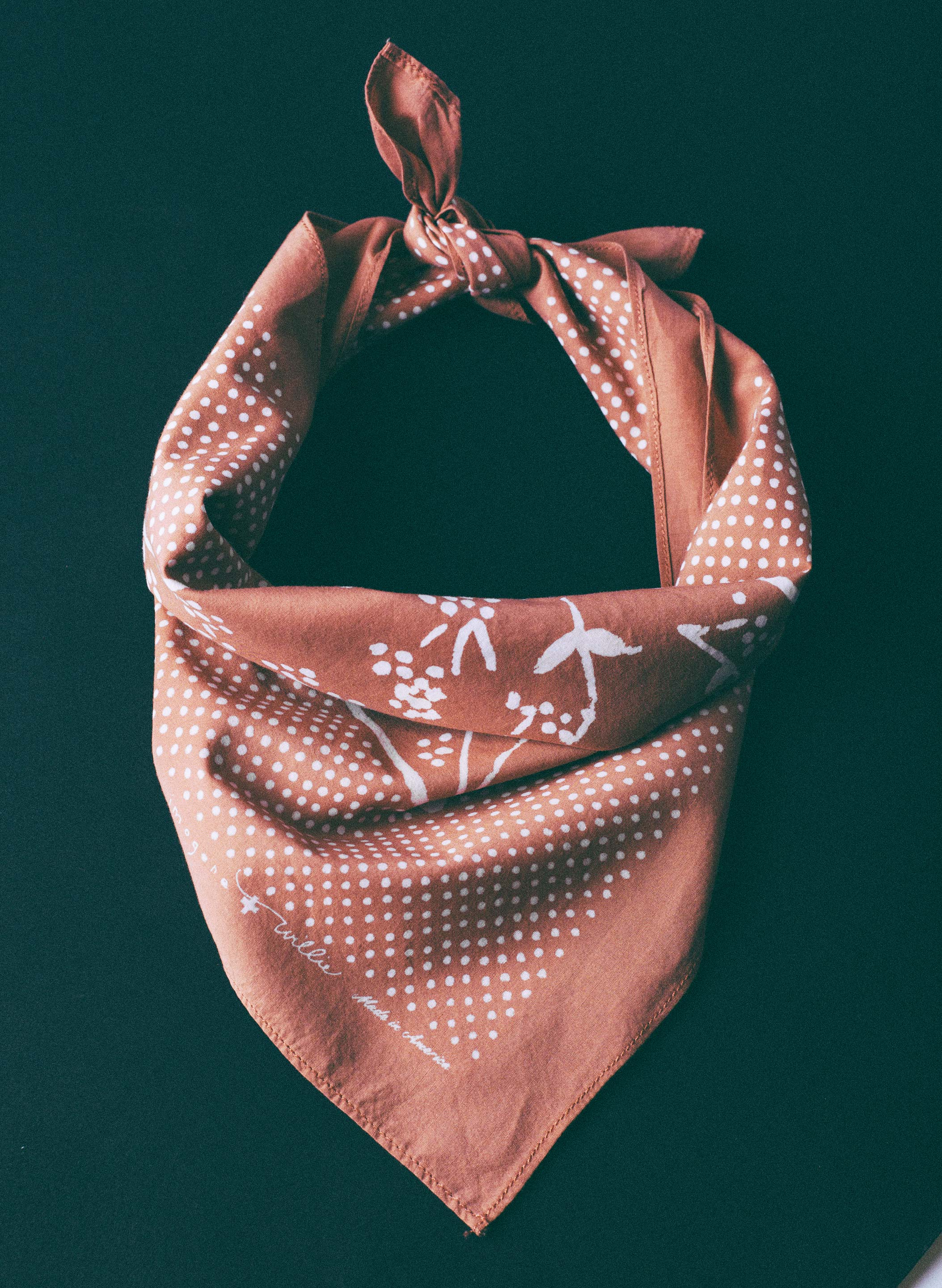 imogene + willie - i+w desert rose bandana