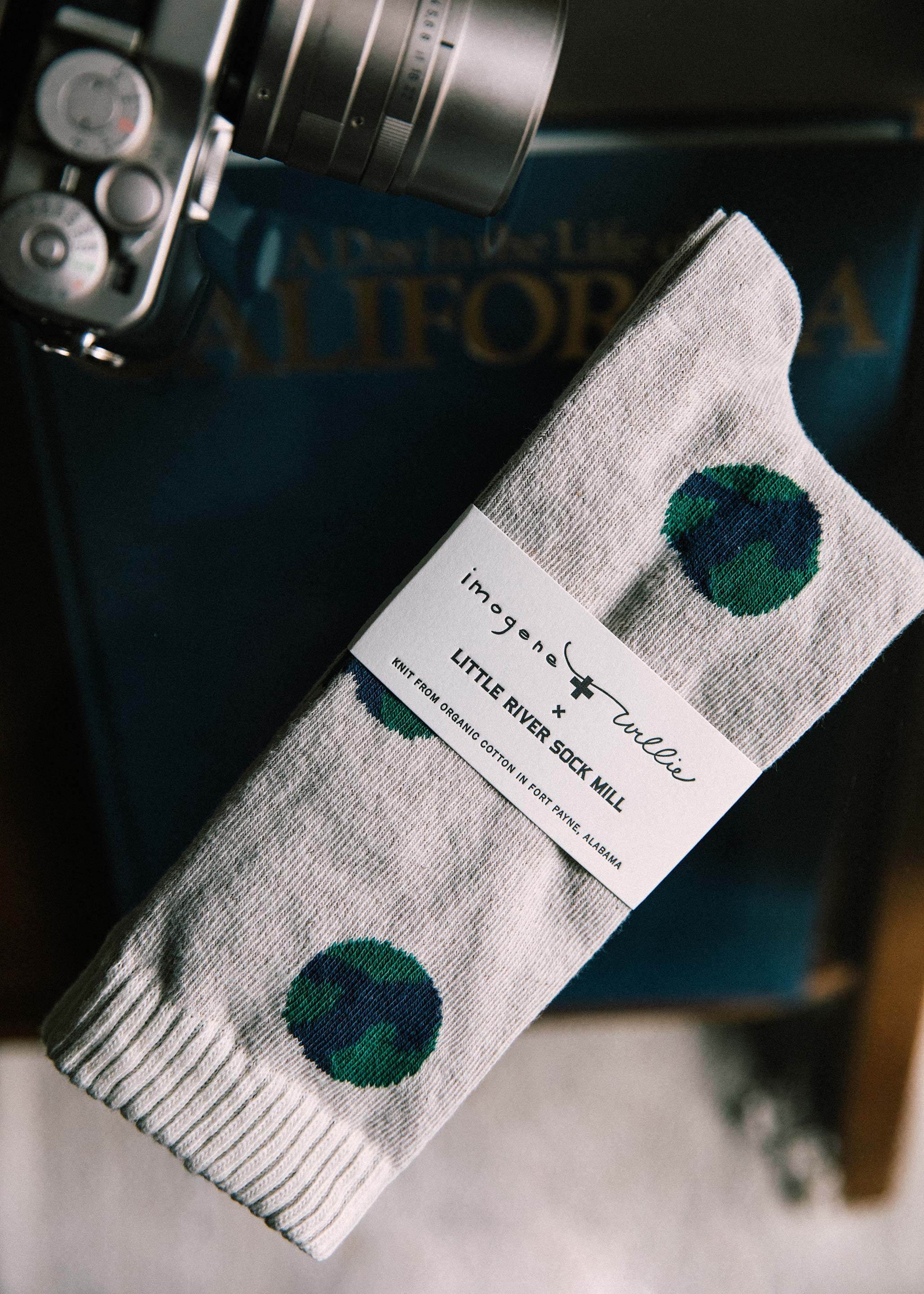 "imogene + willie - the ""earth"" sock"