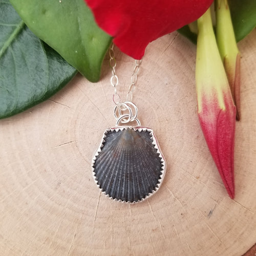 Black Seashell Necklace