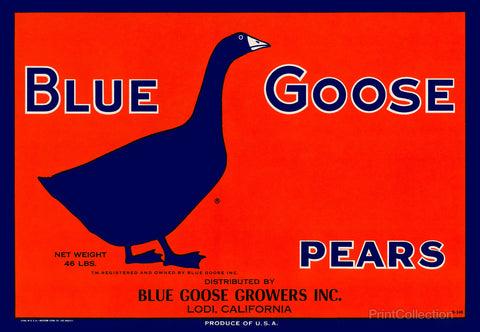 Blue Goose Pears