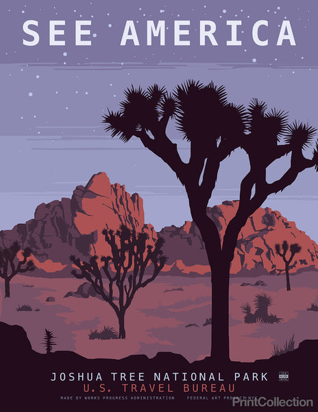 See America, Joshua Tree National Park