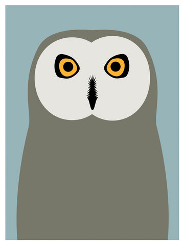 Short Eared Owl, Day