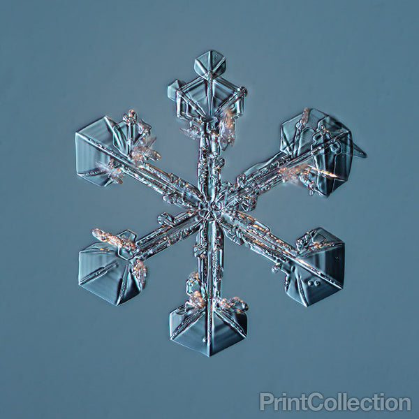 Sectored Plate Snowflake 001.3.23.2014