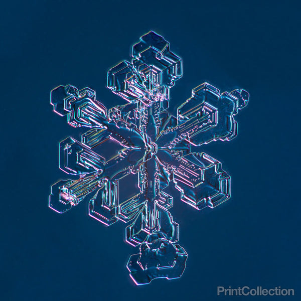 Sectored Plate Snowflake 001.3.13.2014