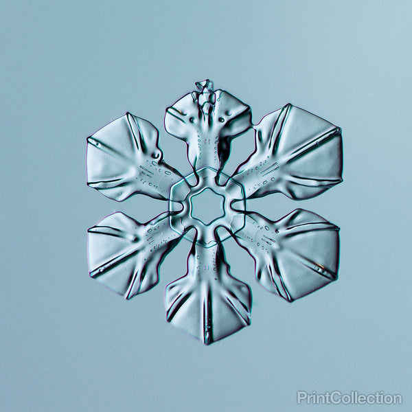 Sectored Plate Snowflake 004.2.16.2014