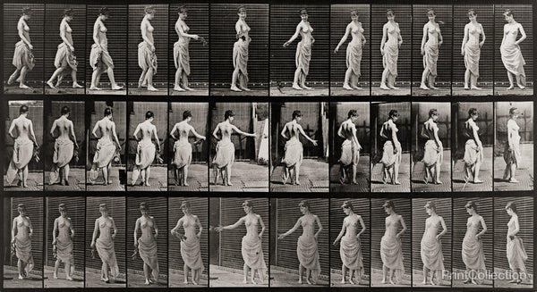 Animal Locomotion, Partially Nude Woman walking and turning