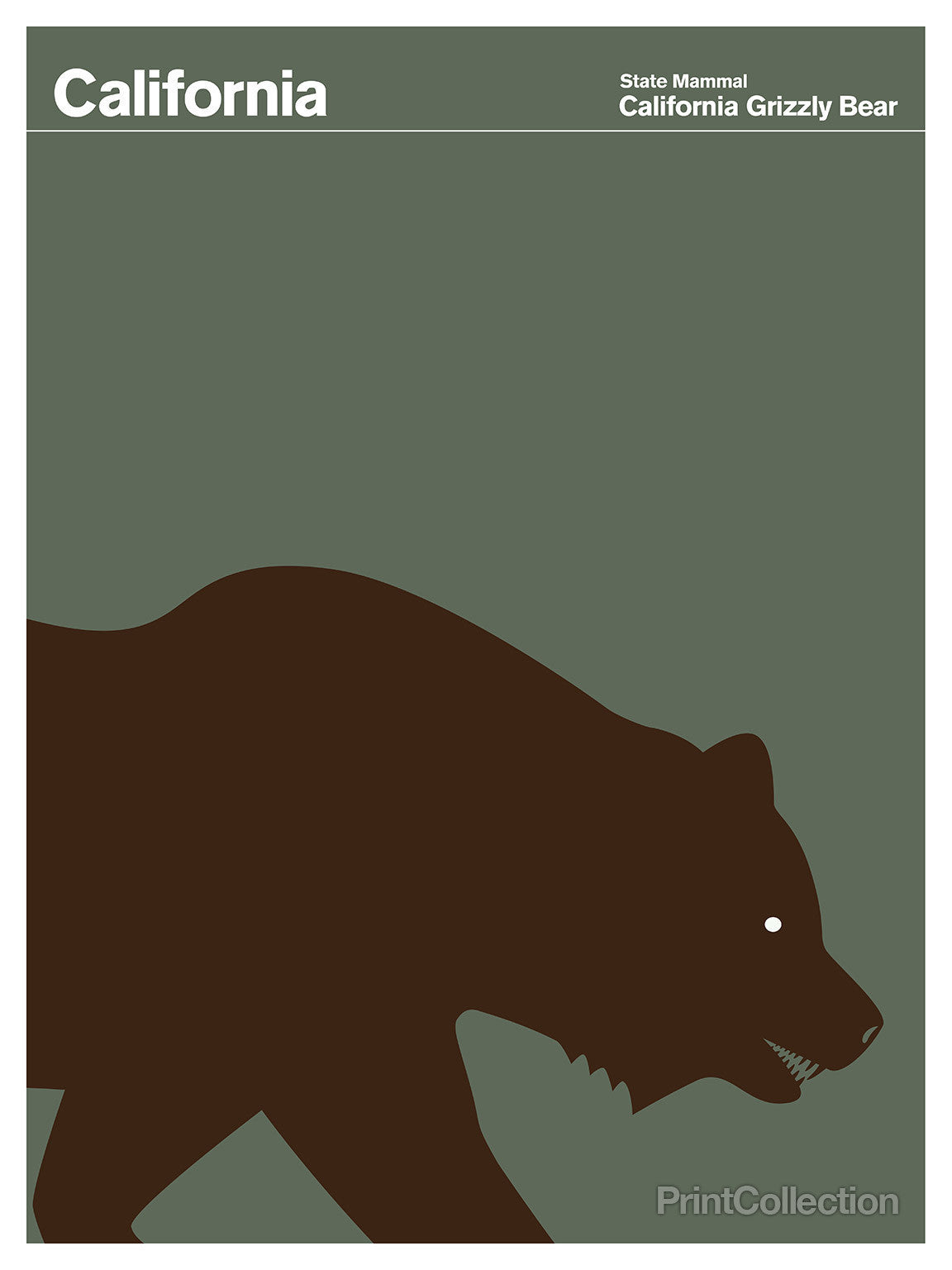print collection california grizzly bear