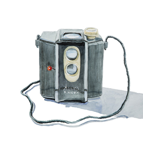Ansco Panda Camera, Watercolor Painting