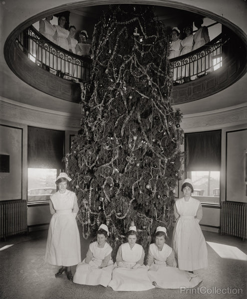 Garfield Hospital, Washington, D.C., Christmas Tree