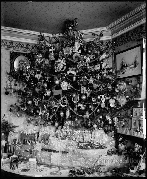 Hauck Christmas Tree, date unknown