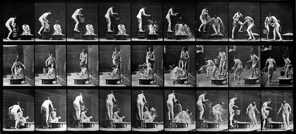 Human Females in Motion Nude Vol 4 - Plate 408