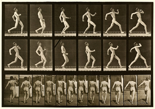 Human Males in Motion Nude Vol 1 - Plate 7