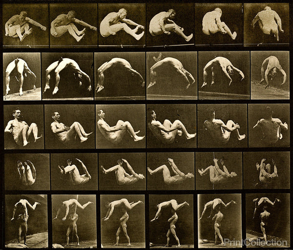 Human Males in Motion Nude Vol 2 - Plate 522