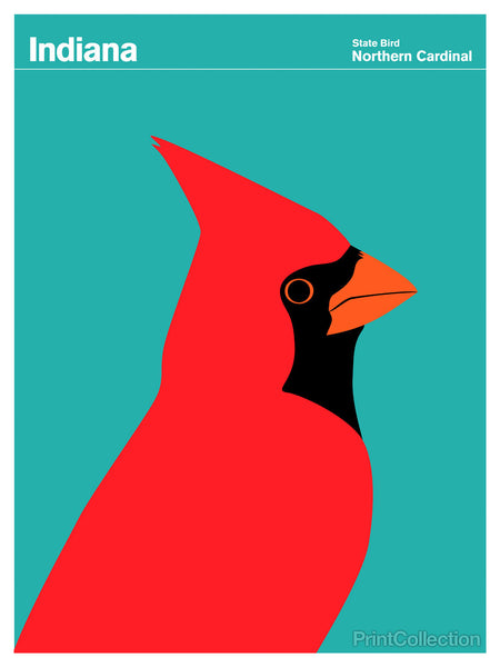 Indiana Northern Cardinal