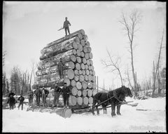 Logging a Big Load in Michigan