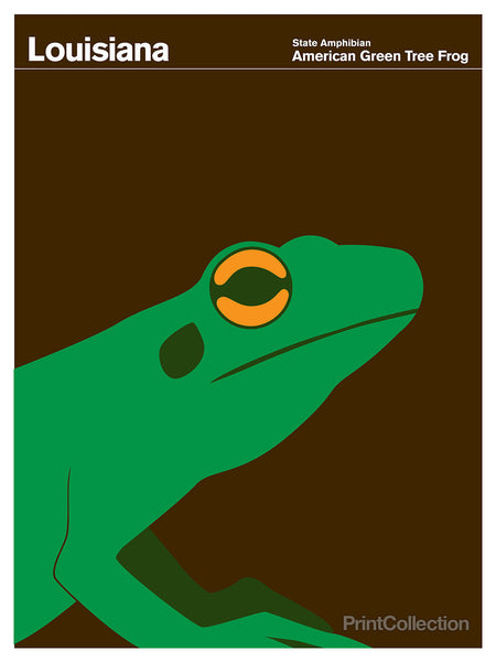Louisiana American Green Tree Frog