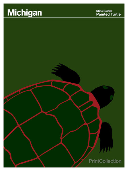 Michigan Painted Turtle