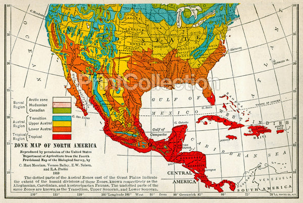Migration Map of North American Birds 1910