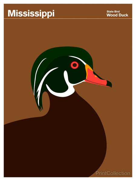 Mississippi Wood Duck