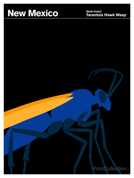 New Mexico Tarantula Hawk Wasp