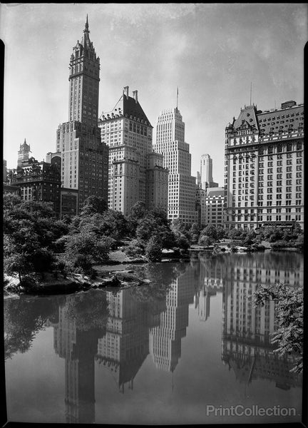 New York city views, from Central Park