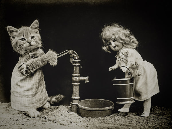 Pumping Water with Cats