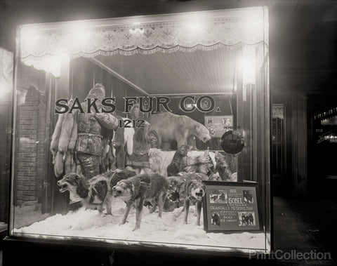 Saks Fur Co., Front with Arctic Display