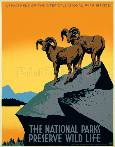 The National Parks Preserve Wild Life