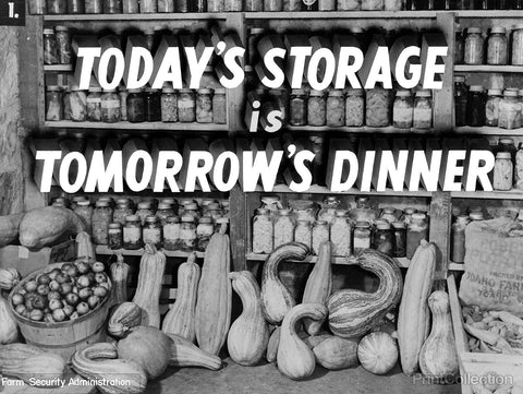 Today's Storage, Tomorrow's Dinner