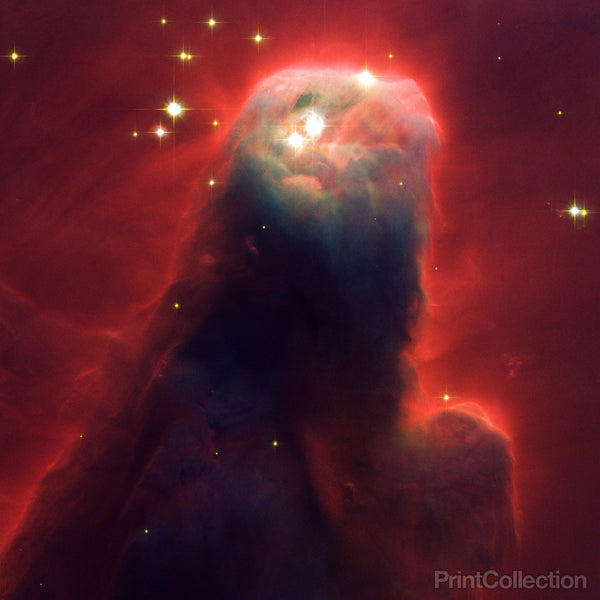Visible-Light Image of the Cone Nebula
