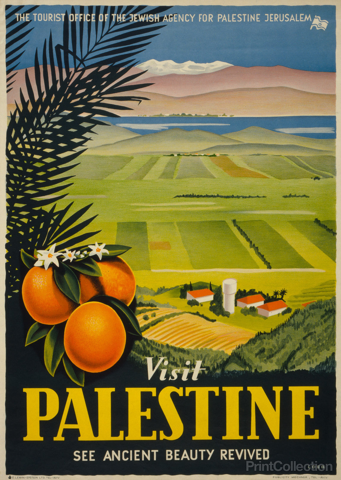 Print Collection - Visit Palestine - Revived
