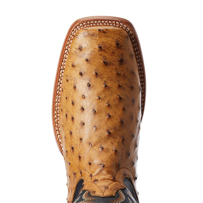 Men's Ariat Tan Full Quill Ostrich 11in. Negro Top Cowboy Boot