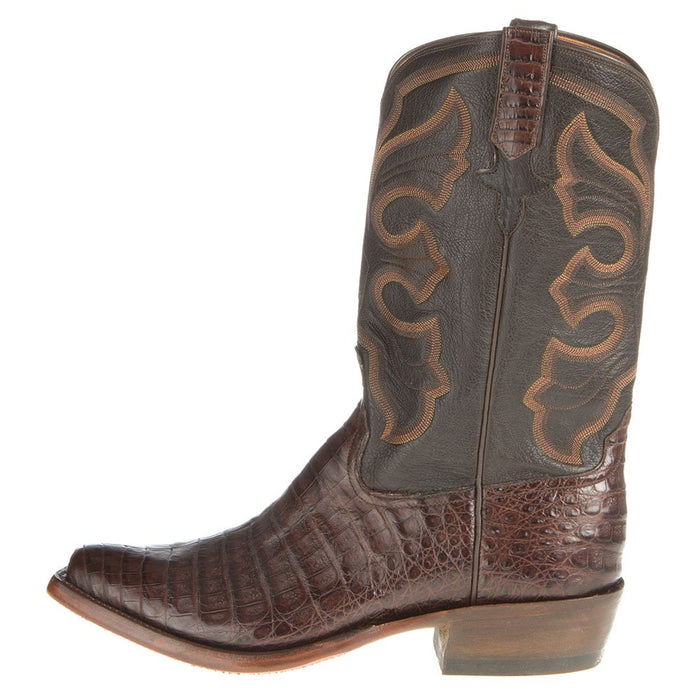 Mens Brown Caiman Belly 12in. Chocolate Calf Top