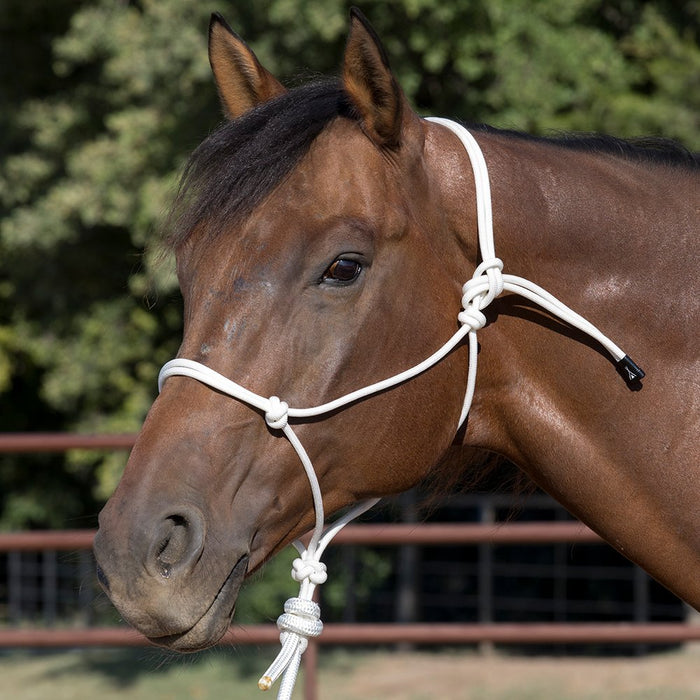 Wigwam Premium 48-Strand Halter with 8` Lead