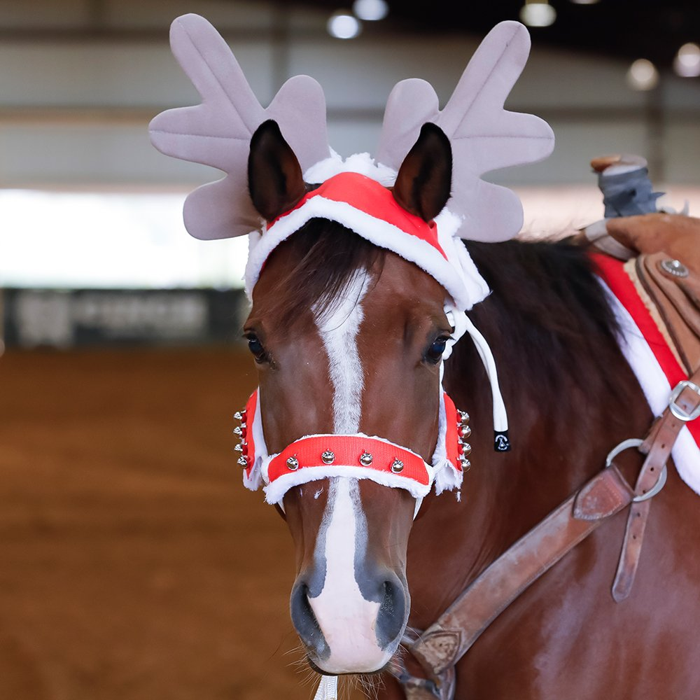 Tough 1 Holiday Halter/Bridle Cover Set