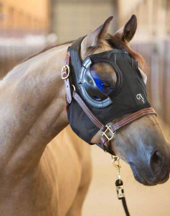 Equilume Belfield Light Mask