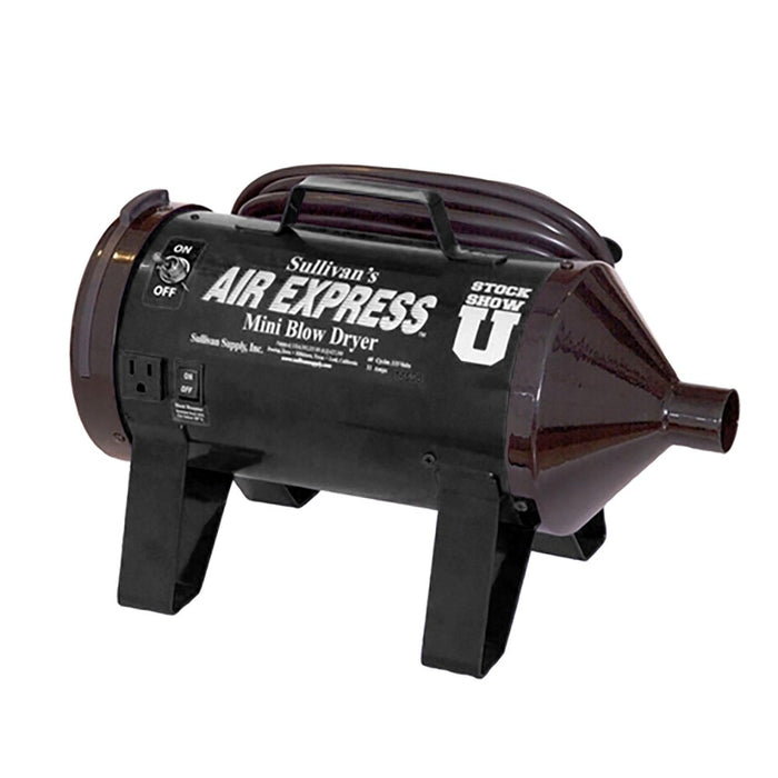 Air Express Mini Blower