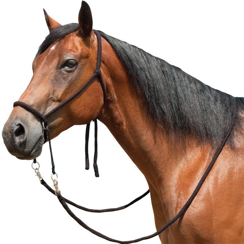 Mustang Bitless Bridle