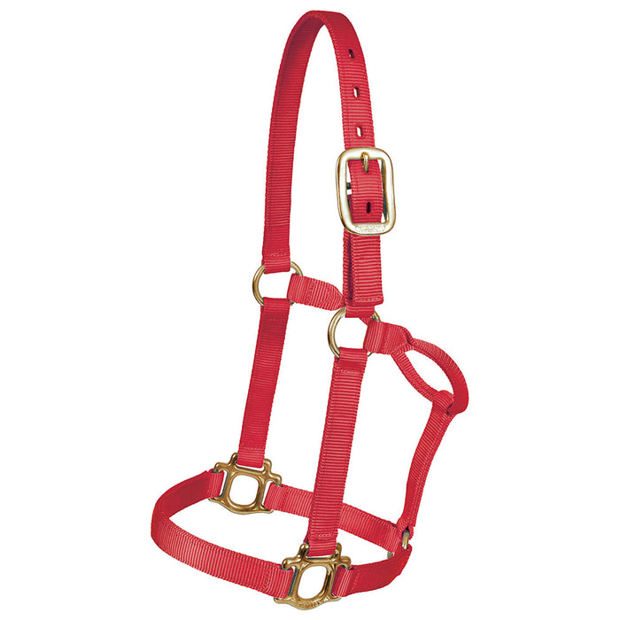 Mustang Yearling Traditional Nylon Halter