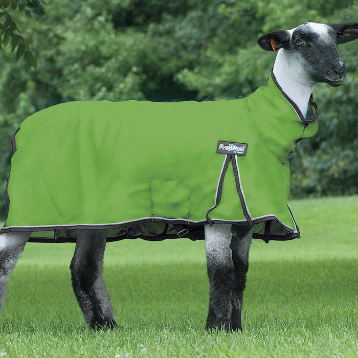 Weaver Leather ProCool Mesh Sheep Blanket XLarge Lime