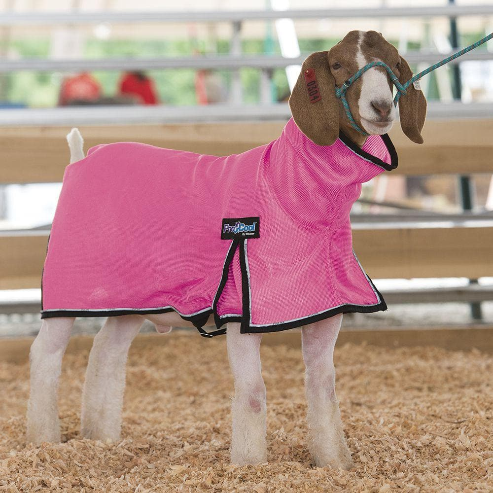 Weaver Leather ProCool Mesh Goat Blanket XLarge Hot Pink