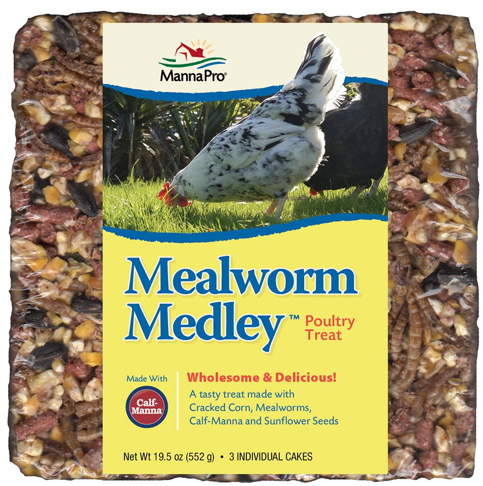 Mealworm Medley Cake Treat 19.5oz 3/pk