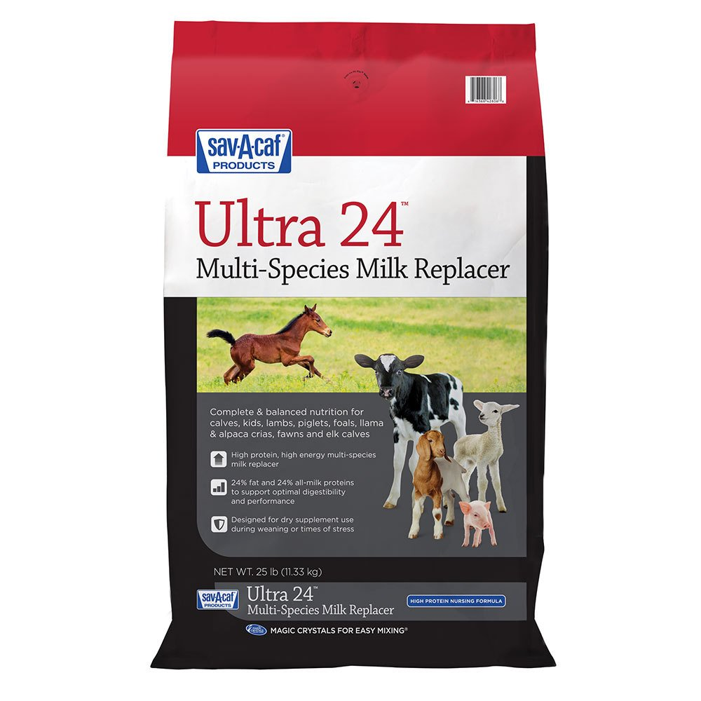 Grade A Ultra 24% Multi-Purpose Milk