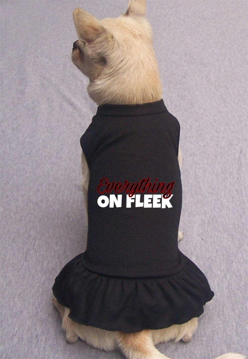 On Fleek Dress