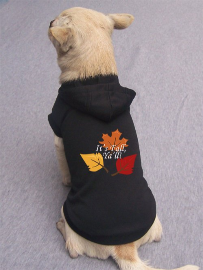 It's Fall Ya'll Pet Hoodie