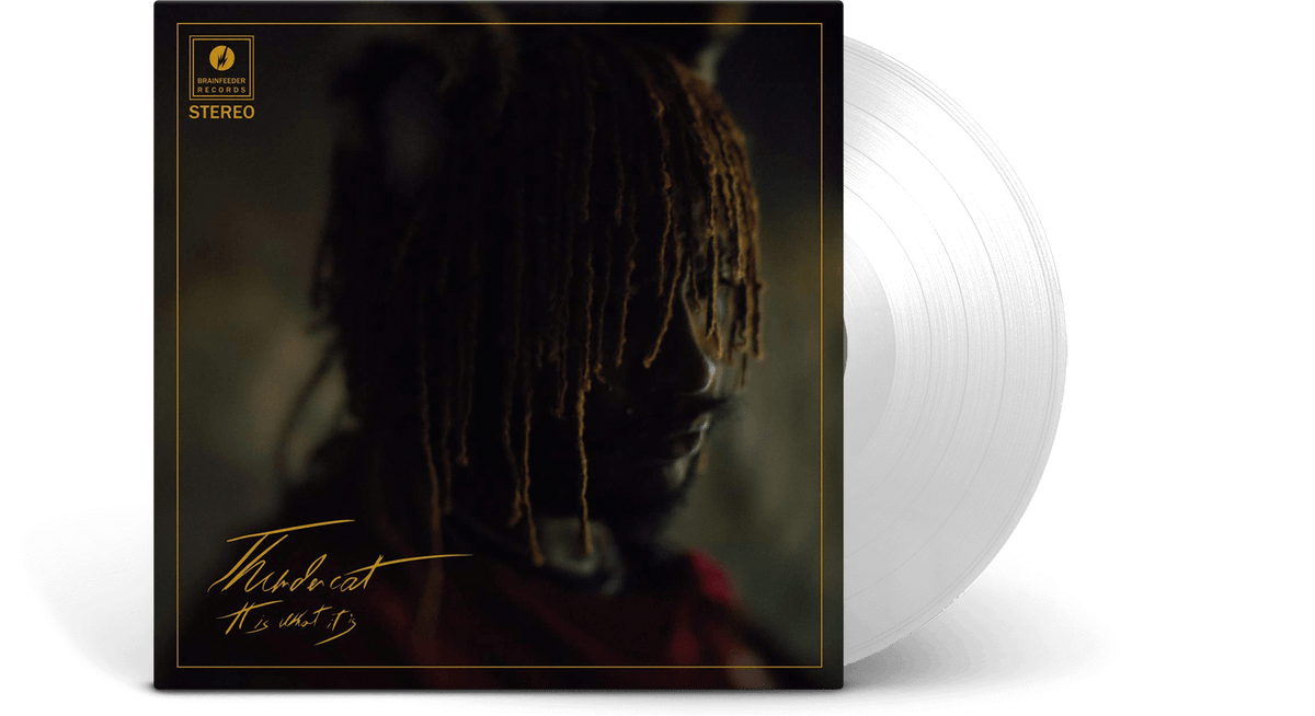 Vinyl - Thundercat<br> It Is What It is - The Record Hub