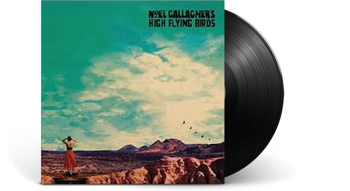 Vinyl - Noel Gallagher's High Flying Birds : Who Built The Moon - The Record Hub