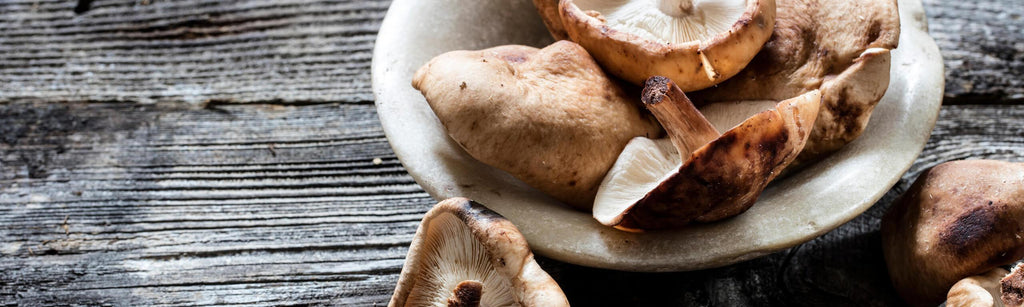 Why you should be including medicinal mushrooms in your diet